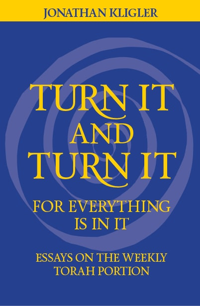 Turn It and Turn It for Everything Is in It: Essays on the Weekly Torah Portion | rabbijonathankligler.com